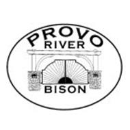 PROVO RIVER BISON