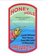 HONEY HOLE TRANSYLVANIA COUNTY NORTH CAROLINA LOCAL, NATURAL RAW HONEY FROM THE LAND OF WATERFALLS BREVARD, NC