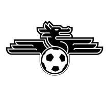 Burlingame Dragons FC LLC