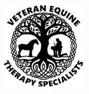 VETERAN EQUINE THERAPY SPECIALISTS