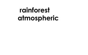 RAINFOREST ATMOSPHERIC