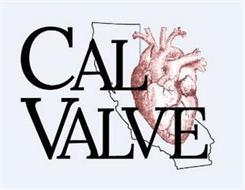 CALVALVE