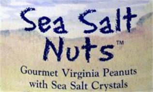 SEA SALT NUTS GOURMET VIRGINIA PEANUTS WITH SEA SALT CRYSTALS