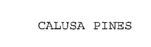 CALUSA PINES