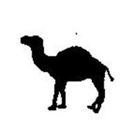 Camel Productions