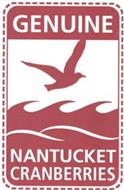 GENUINE NANTUCKET CRANBERRIES