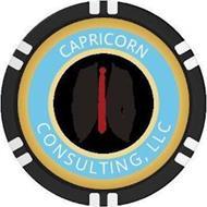 CAPRICORN CONSULTING, LLC