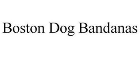 BOSTON DOG BANDANAS