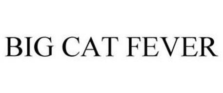 BIG CAT FEVER