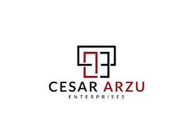 CESAR ARZU ENTERPRISES