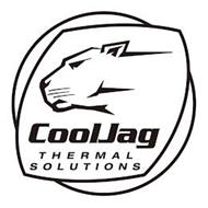 COOLJAG THERMAL SOLUTIONS