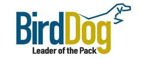 BIRDDOG LEADER OF THE PACK