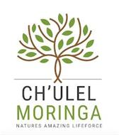 CH'ULEL MORINGA NATURES AMAZING LIFE FORCE