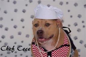 CHEF CECE