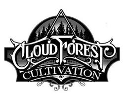 CLOUD FOREST CULTIVATION