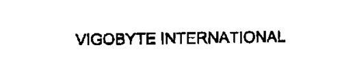 VIGOBYTE INTERNATIONAL