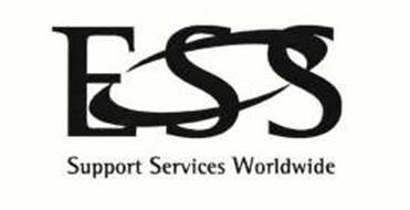 Essay support services