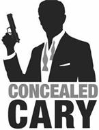 CONCEALED CARY