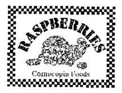 RASPBERRIES CORNUCOPIA FOODS