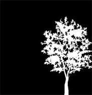 Cottonwood Residential O.P., LP