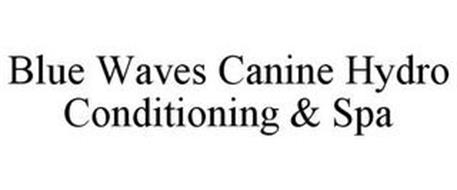 BLUE WAVES CANINE HYDRO CONDITIONING & SPA