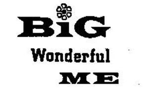 BIG WONDERFUL ME