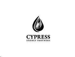 CYPRESS ENERGY PARTNERS