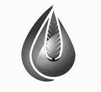 Cypress Energy Holdings, LLC