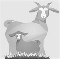 Dairy Goat Co-Operative (NZ) Limited