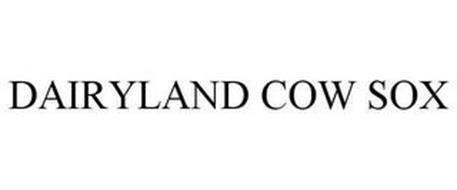 DAIRYLAND COW SOX