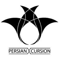 PERSIAN X CURSION
