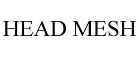HEAD MESH