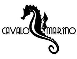 CAVALO MARINO