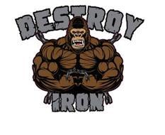 DESTROY IRON
