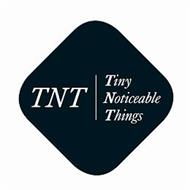 TNT TINY NOTICEABLE THINGS