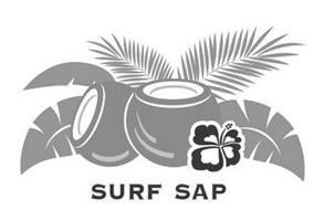 SURF SAP