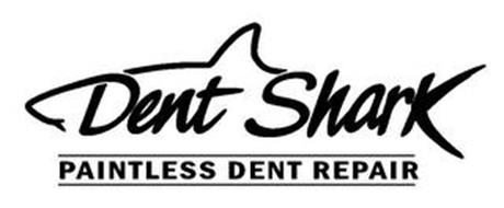 DENT SHARK PAINTLESS DENT REPAIR