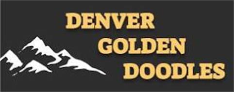 DENVER GOLDEN DOODLES