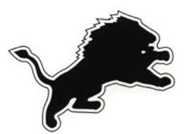 DETROIT LIONS, INC.