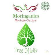 MORINGANICS TREE OF LIFE MORINGA OLEIFERA 100% NATURAL 100% ORGANIC 1 LB