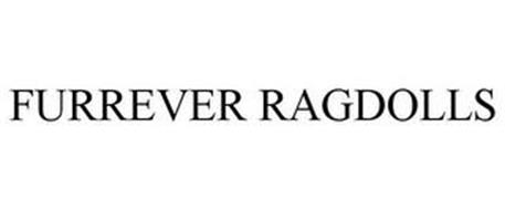 FURREVER RAGDOLLS