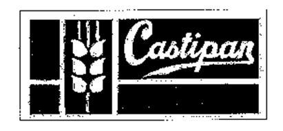 CASTIPAN