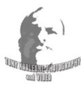 TONY KORLEONE PHOTOGRAPHY AND VIDEO