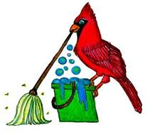 DirtyBirds Cleaning Service