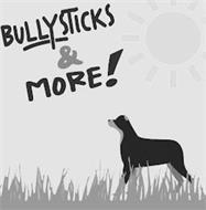 BULLYSTICKS & MORE