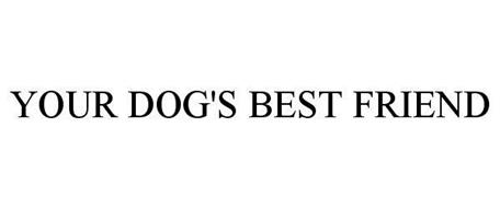 YOUR DOG'S BEST FRIEND