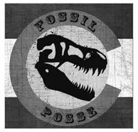 C FOSSIL POSSE