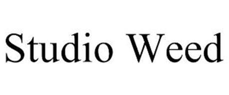 STUDIO WEED