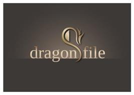 DRAGON FILE