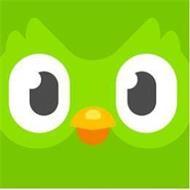 Duolingo, Inc.
